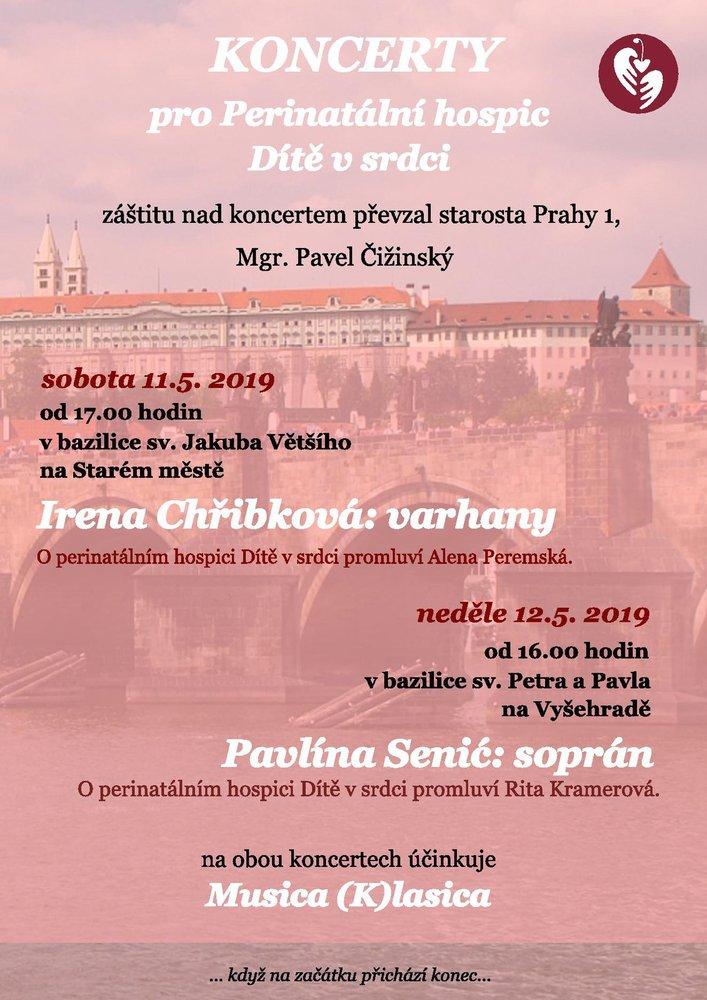 2019_05_dva_koncerty_dvs