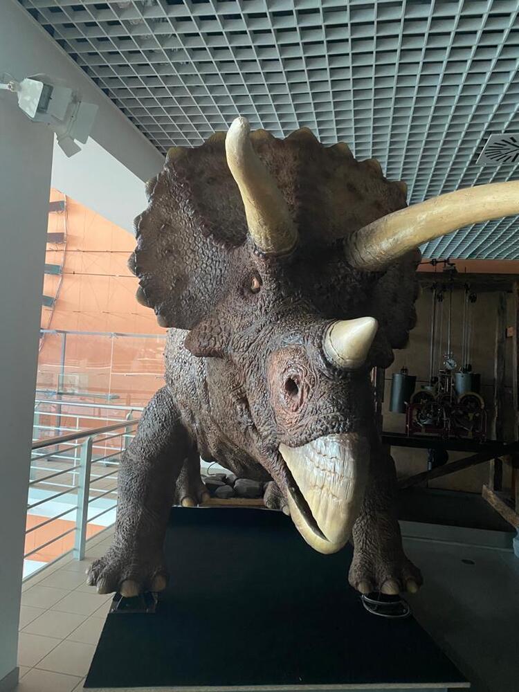 roboti_triceratops